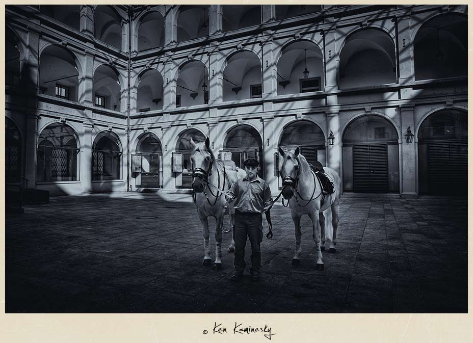 Lipizzaner Stallions and groom at the Spanish Riding School of Vienna, Austria