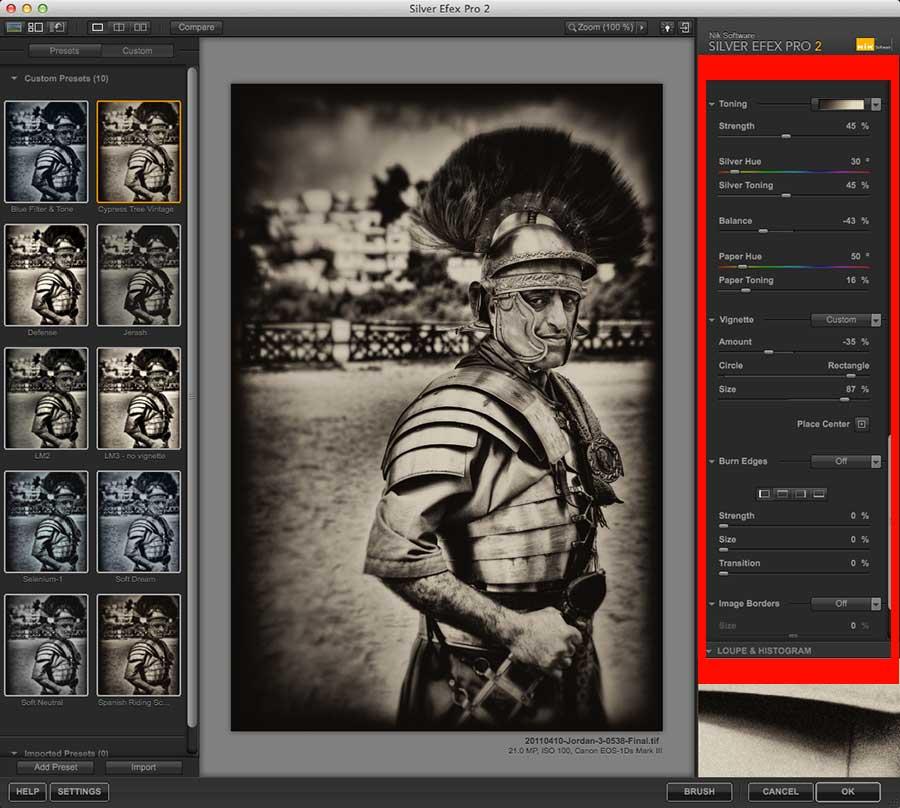 Silver Efex Pro 2 toned image