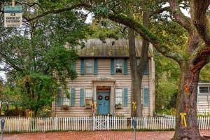 Yellow ribbons tied around trees in Savannah Georgia