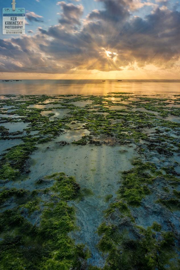 Zanzibar at sunrise